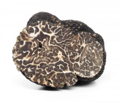 Brumale truffel